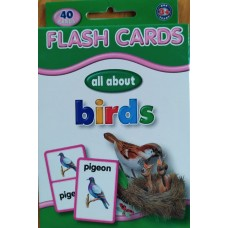 Flash Cards Birds